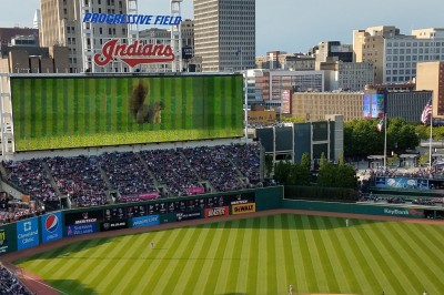 VIDEO: Twins-Indians Game Hilariously Delayed After Squirrel Invades Field